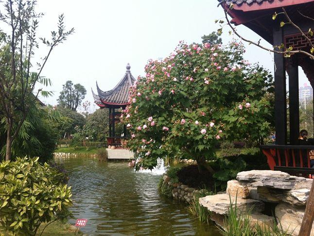 值得称道的是园博园中的 杭州园